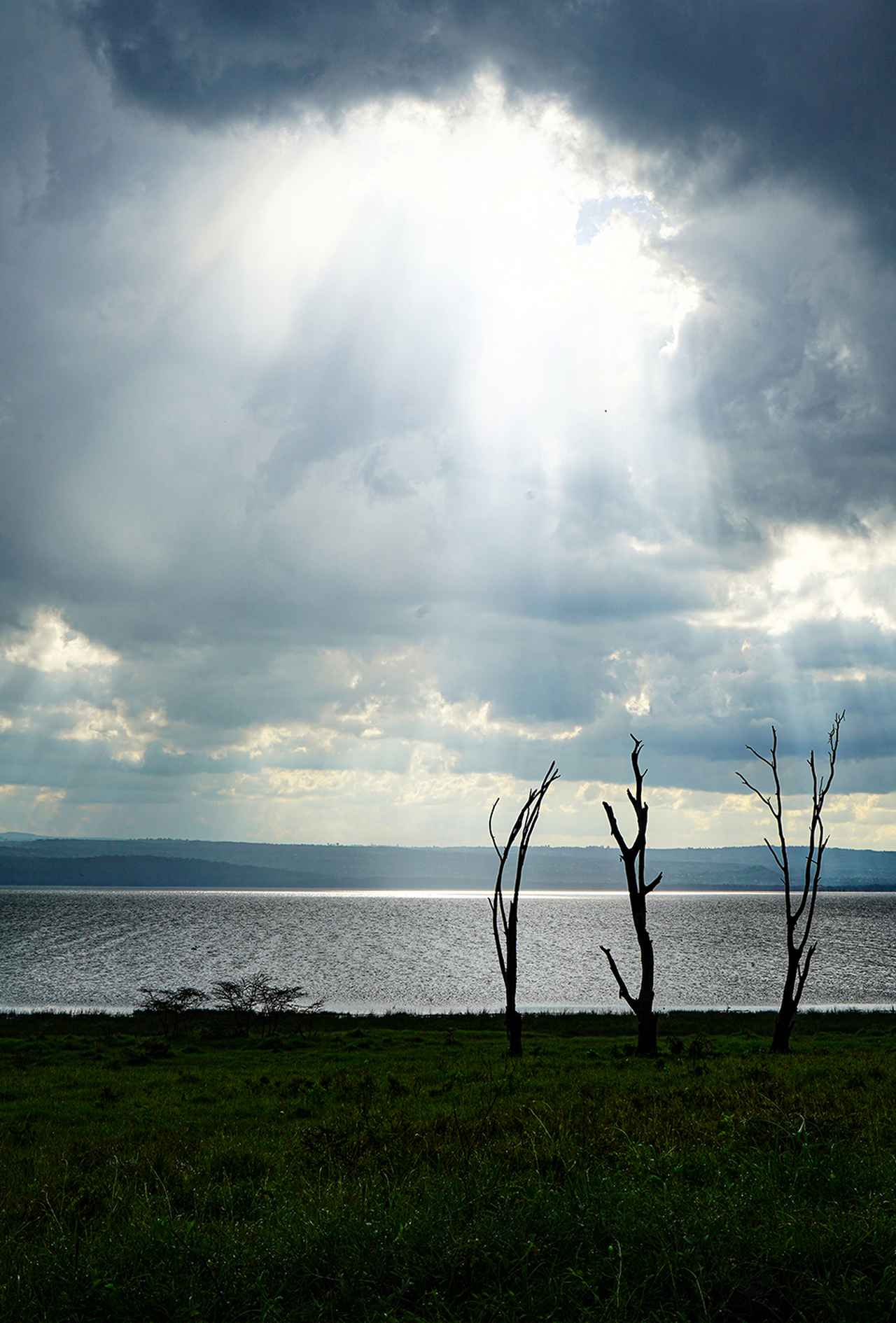 Images : サンブル国立保護区