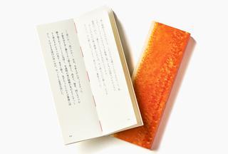 本と温泉の小説『城崎へかえる』