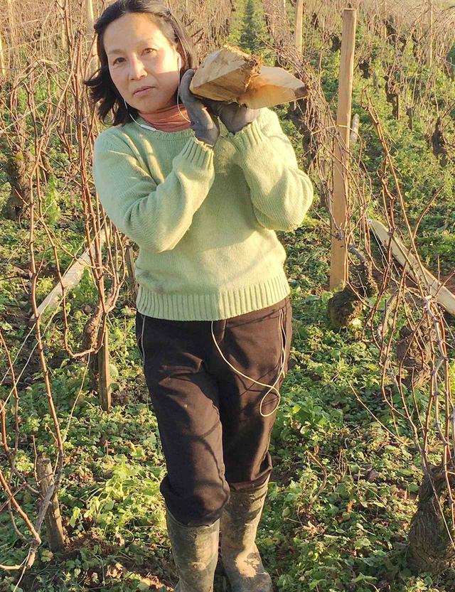 画像: 栗山朋子さん(TOMOKO KURIYAMA) 東京生まれ。祖父と父がワイン好きだったことからワインに魅せられる。「シモン・ビーズ」現当主のビーズ千砂さんを介してボット氏と知り合い、ブルゴーニュへ