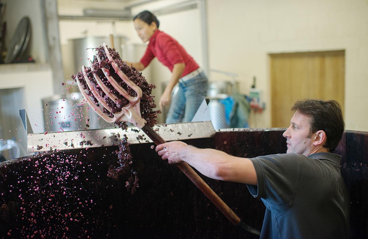 "Images : 4番目の画像 - 「日本人女性醸造家が造る ""麗し""のブルゴーニュワイン」のアルバム - T JAPAN:The New York Times Style Magazine 公式サイト"