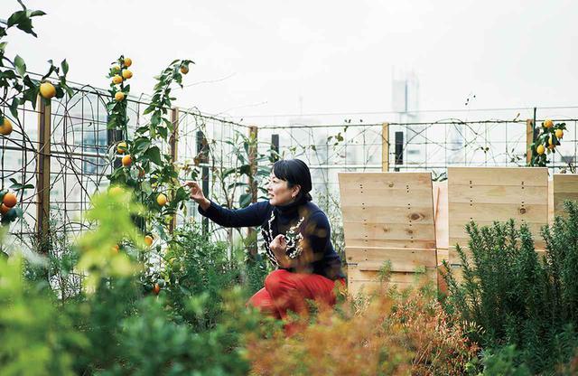 画像: ビルのテラスの菜園で野菜を育てる野村友里。ここからは渋谷駅の高層タワー群までくまなく見渡せる。右手の木箱がコンポストボックスになっていて、ゴミの一部を堆肥にしている