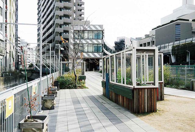 画像: 最初の畑は、原宿、渋谷、恵比寿の3カ所からスタートした。現在、渋谷ストリームから恵比寿方面に向かう渋谷川沿いの遊歩道にある畑は、近所の保育園の子どもたちにも人気