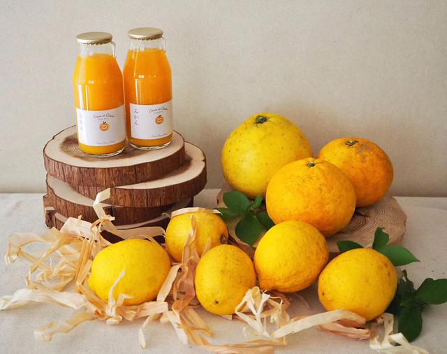 画像: シトロンエシトロンの「おうちで作ろう! BOX」¥3,500(クール便使用、送料込み) ※6月中は注文可能の見込み。気象などの条件と収穫量により、売り切れ次第終了 レモンと小瓶ジュースを中心に、ピール作りに向いた旬の柑橘(5月は文旦とサマーキング、文旦が終わったのちは紅甘夏や新甘夏、美生柑など)が入る COURTESY OF CITRON ET CITRON