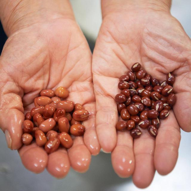 画像1: 成城「櫻子」指南。 小豆を自宅でおいしく煮るコツ