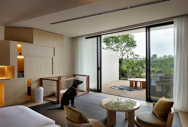 画像: 「ドッグフレンドリー Wa Modern」 愛犬と泊まれる客室も造られている