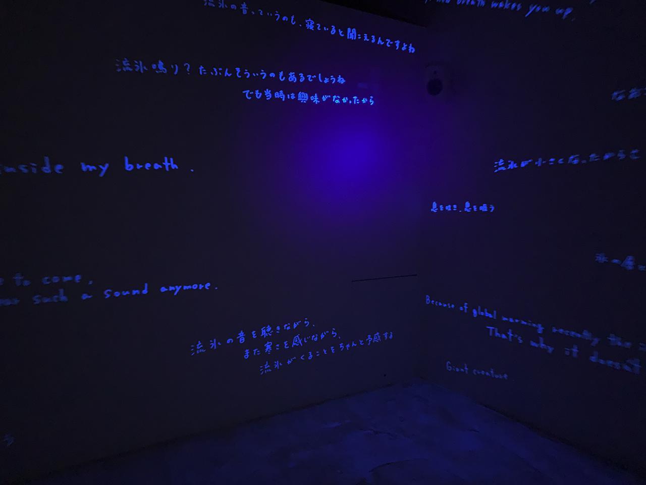 Images : 道草展:未知とともに歩む|水戸芸術館 現代美術ギャラリー