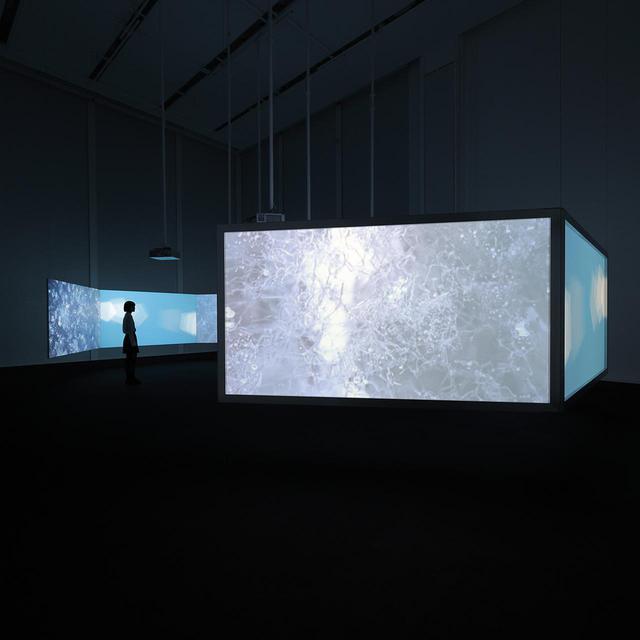 画像: 《New Ocean: thaw》 2001年 展示風景、エスパス ルイ・ヴィトン東京 3チャンネルビデオ(カラー、音声)、6面投影、スクリーンによる映像インスタレーション、4分10秒 COURTESY OF THE ARTIST AND THE FONDATION LOUIS VUITTON, PHOTO CREDITS: © KEIZO KIOKU/LOUIS VUITTON