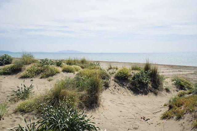 画像: ボルゲリは地中海沿岸に面したリゾート地でもある
