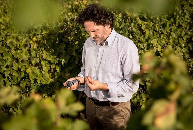 画像: 醸造家のアクセル・ハインツ氏。毎年、気候を細やかに分析、地球温暖化にも強い関心を寄せている