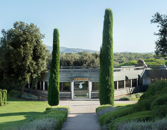 画像: 近代的な設備が整う、「オルネッライア」のカンティーナ(ワイナリー)。手前にあるのはボルゲリを象徴する糸杉の木