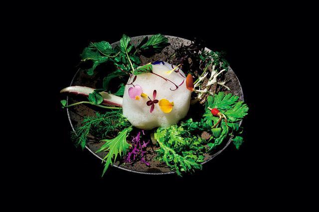 画像: 小林のスペシャリテと言われる「庭園風季節のサラダ」。40種類ほどの野菜を使い、苦味、酸味、甘味などの味わい、さまざまなテクスチャーを楽しめる