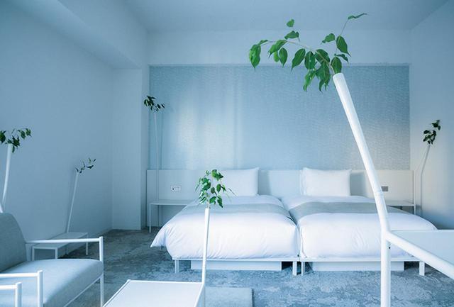 画像: 藤本壮介デザインのスペシャルルーム。家具につけられた管から植物がめぶいている。家具も藤本が手がけた