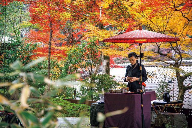 画像: 戦国時代の豪商、角倉了以が別邸・書庫として使用していた私邸のあった場所に建つ「星のや京都」では嵐山の四季を堪能できる