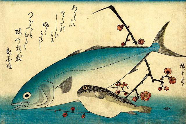 画像: 歌川広重の《魚づくし・いなだとふぐ》(1830~40年代頃) SEPIA TIMES/UNIVERSAL IMAGES GROUP/GETTY IMAGES