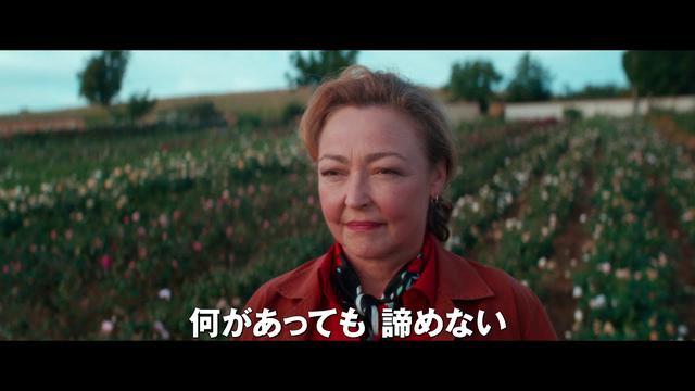 画像: 映画『ローズメイカー 奇跡のバラ』予告編 配給:松竹 youtu.be