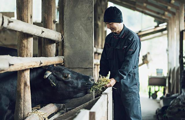 画像: 全員(牛)の顔がわかると話す竹内孝英