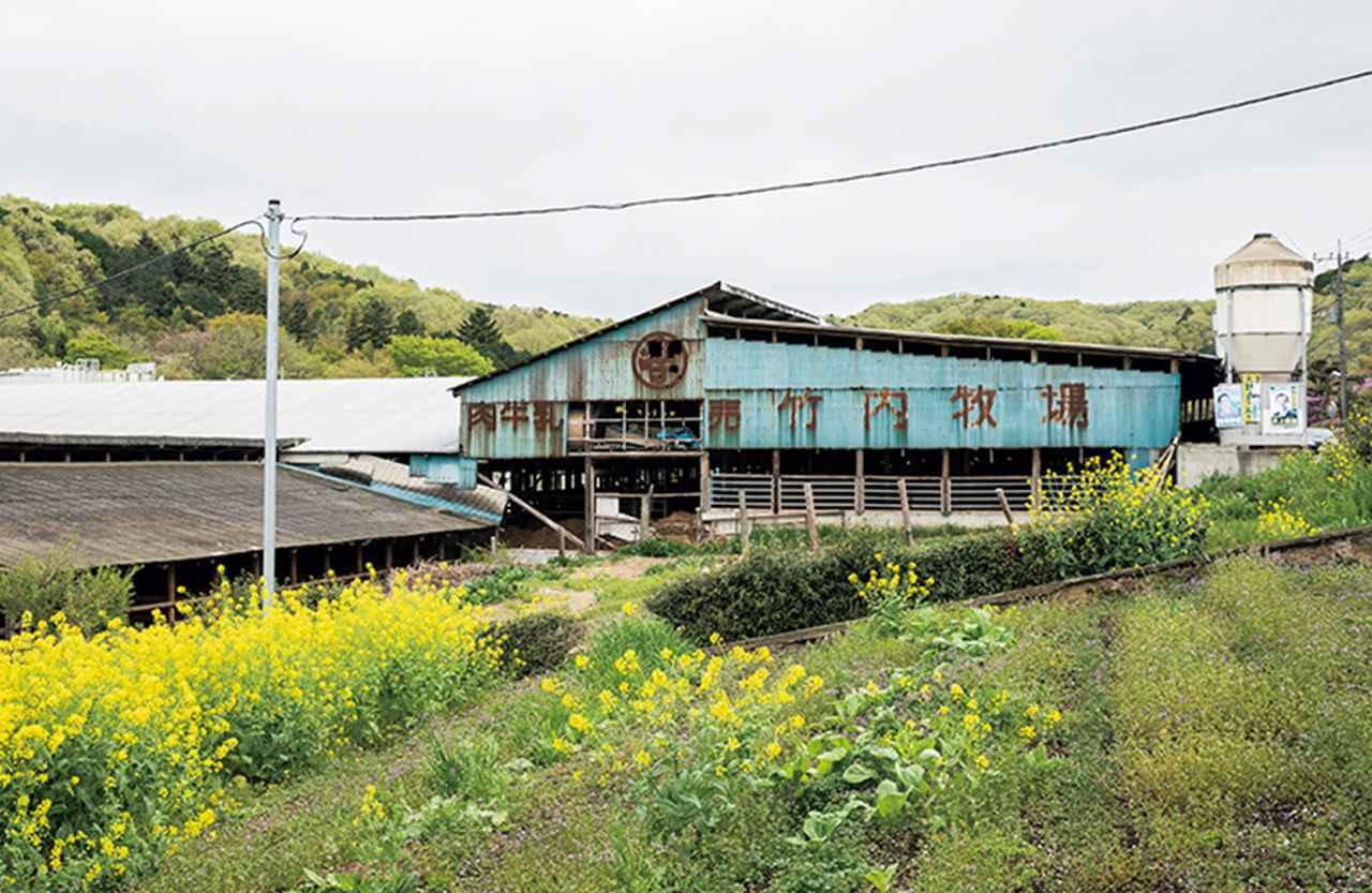 Images : 竹内牧場