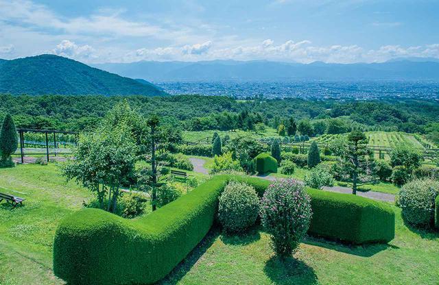 """画像: 「サントリー登美の丘ワイナリー」の展望テラスから甲府盆地を望む。山梨を代表するブドウ""""甲州""""など、さまざまな品種が育つ"""