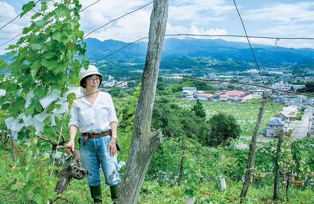画像: 岸平典子(NORIKO KISHIDAIRA) 玉川大学農学部農芸化学科卒業後、1990年ワイン造りの研修のため渡仏、国立マコン・ダヴァイエ醸造学校で学び、ロワールやブルゴーニュなどのドメーヌで研鑽を積む。1994年帰国し家業に参加、2005年より現職。明治初期創設の老舗農園の5代目当主となる。「銀座の老舗『空也』の最中が大好きです。拡大することなく一つ処を守り、よいものを作り続ける職人魂に惹かれます」。ブドウ畑と上山の町並み、そして蔵王連峰を望む穏やかな風景。「この景色が大好きなんです」