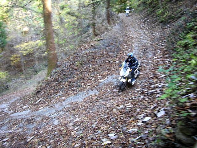 画像3: X-ADVでハードな林道ツーリングを決行?