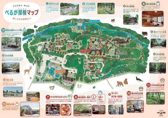 画像: 地球元気村30周年イベントCamp&Music フェス! + 森と水を育む尾白の森シンポジウム
