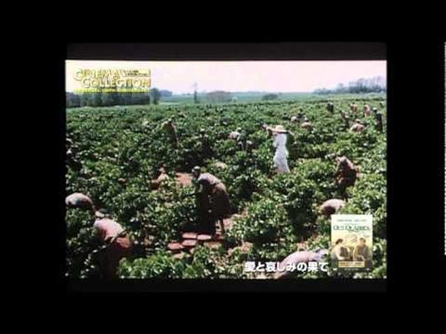 画像: 映画「愛と哀しみの果て」劇場予告 youtu.be
