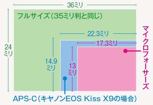 画像: オリンパスとパナソニックはマイクロフォーサーズ、富士フイルムはAPS-C、それ以外のメーカーはフルサイズとAPS-Cの両方を採用している。