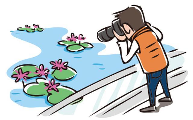画像: 花壇や水面の花などの場合は、近づける距離が限られる。そういう状況だと、中望遠域の画角では大きく写せない。