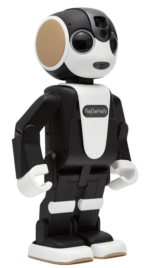画像1: おしゃべり&見守りが得意技! かわいい小型ロボットの実力は? しゃべる家電をレポート〈3〉