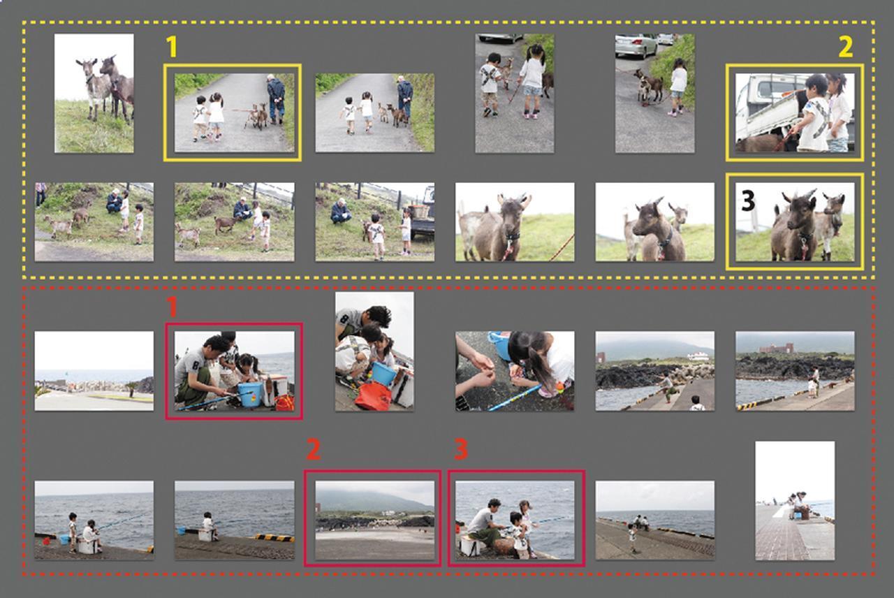 画像: 同じシーンの写真は「3枚まで」といったルールを決める。そのときの状況がわかるように、寄りや引きを意識して選びたい。