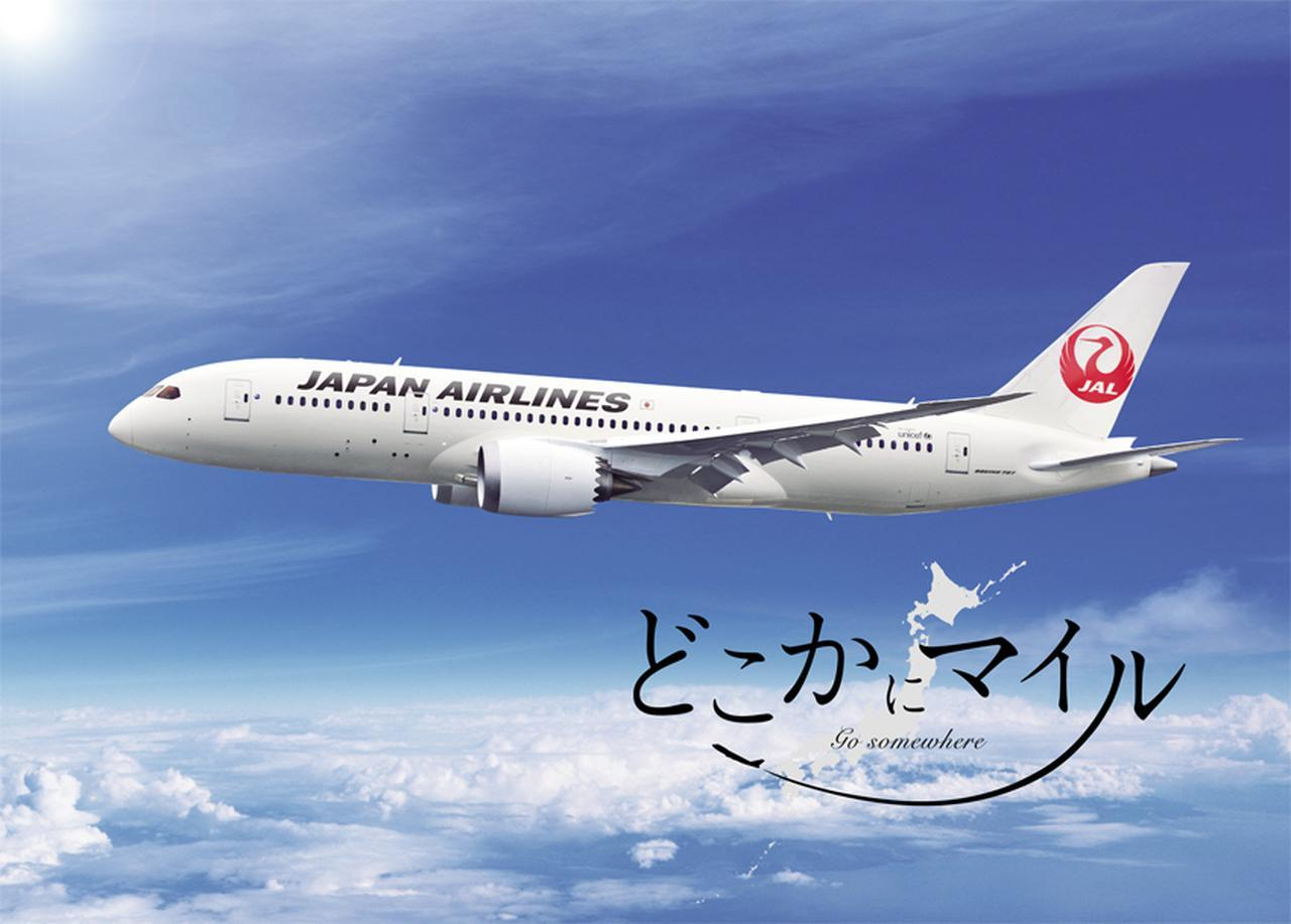 画像1: どこに行くかわからない!? 日本航空の新サービス「どこかにマイル」が大人気!【キーパーソンに訊け!】