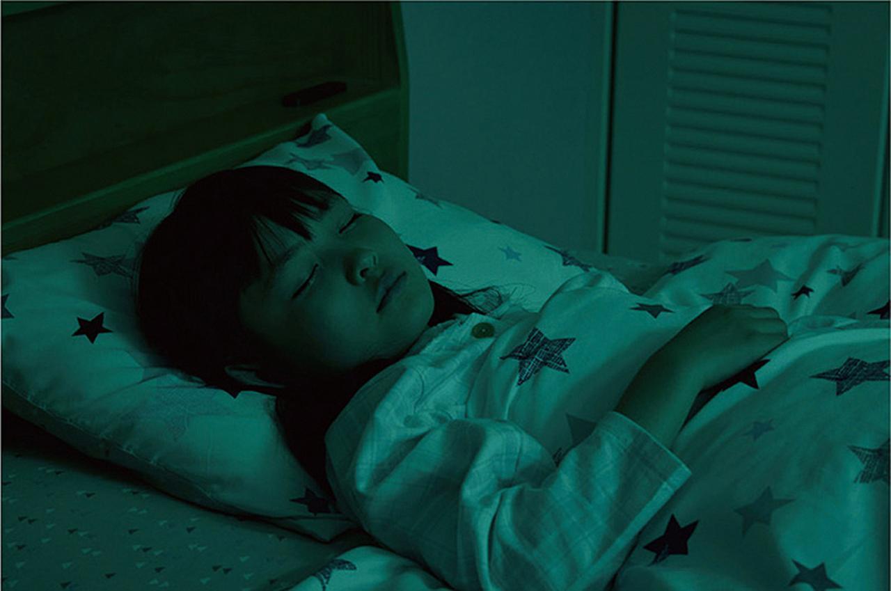 画像: 「ホタルックLED」のブルーグリーンは、淡い光量でも視認性のいいカラーとされている(画像はイメージ)