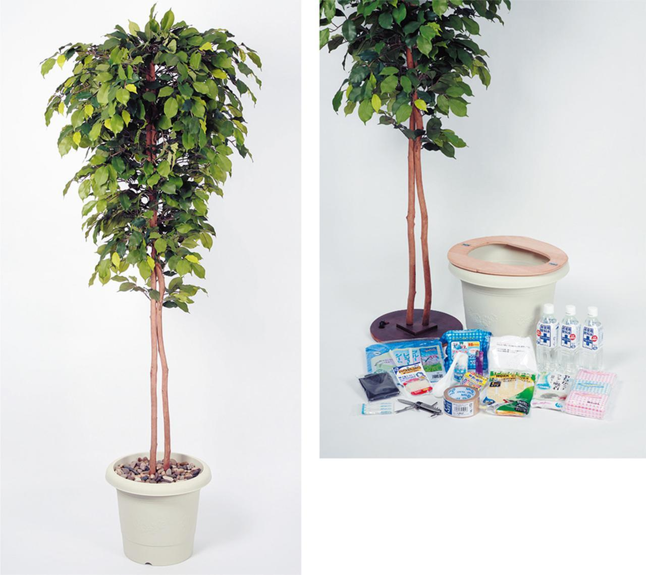 画像: TG-011はベンジャミンの植木型の人口樹木。光触媒加工が施され、消臭・抗菌などの効果もある。