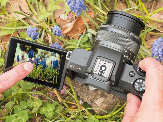 画像: 地面すれすれの位置でカメラを構えても、液晶モニターを可動させ、画面をタッチすれば楽々撮影できる。可動式&タッチ対応の液晶モニターなら、撮影アングルの幅が格段に広がる。