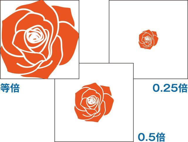 画像: 撮影倍率は、被写体の大きさとセンサーサイズを比べて表し、0.5倍であればかなり大きく、等倍はマクロレンズと呼ばれる。