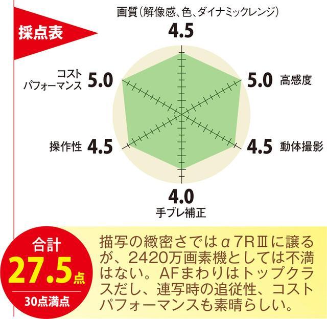 画像2: 高級ミラーレス一眼をCHECK!【ソニー・α7Ⅲ】