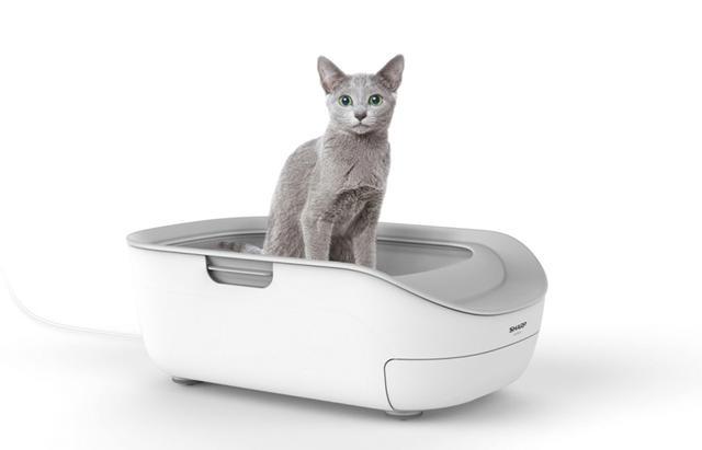 画像: 本体の代金のほかに「COCORO PET」というクラウドサービスの利用料(300円/月・税別)がかかる。