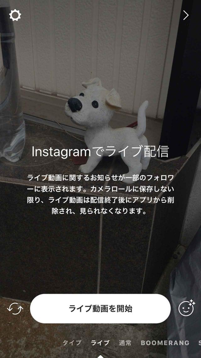 画像: 「インスタグラム」のスマホアプリで、撮影モードに移行して「ライブ」を選択すれば、すぐに動画配信できる。