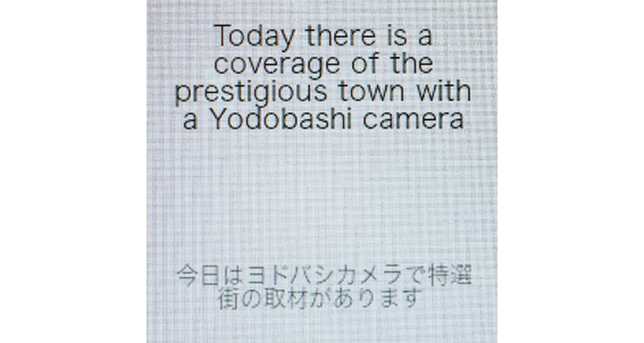 画像: 通訳しているときの画面。聞こえにくいときは、この画面を見せればOK。