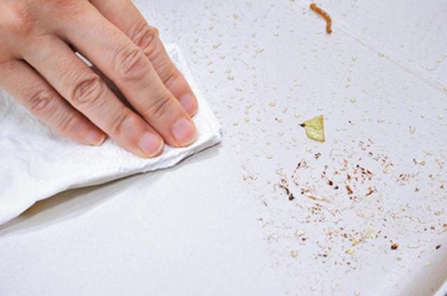 画像: フッ素加工で、お手入れ簡単。ソースの汚れも一拭きできれいに。