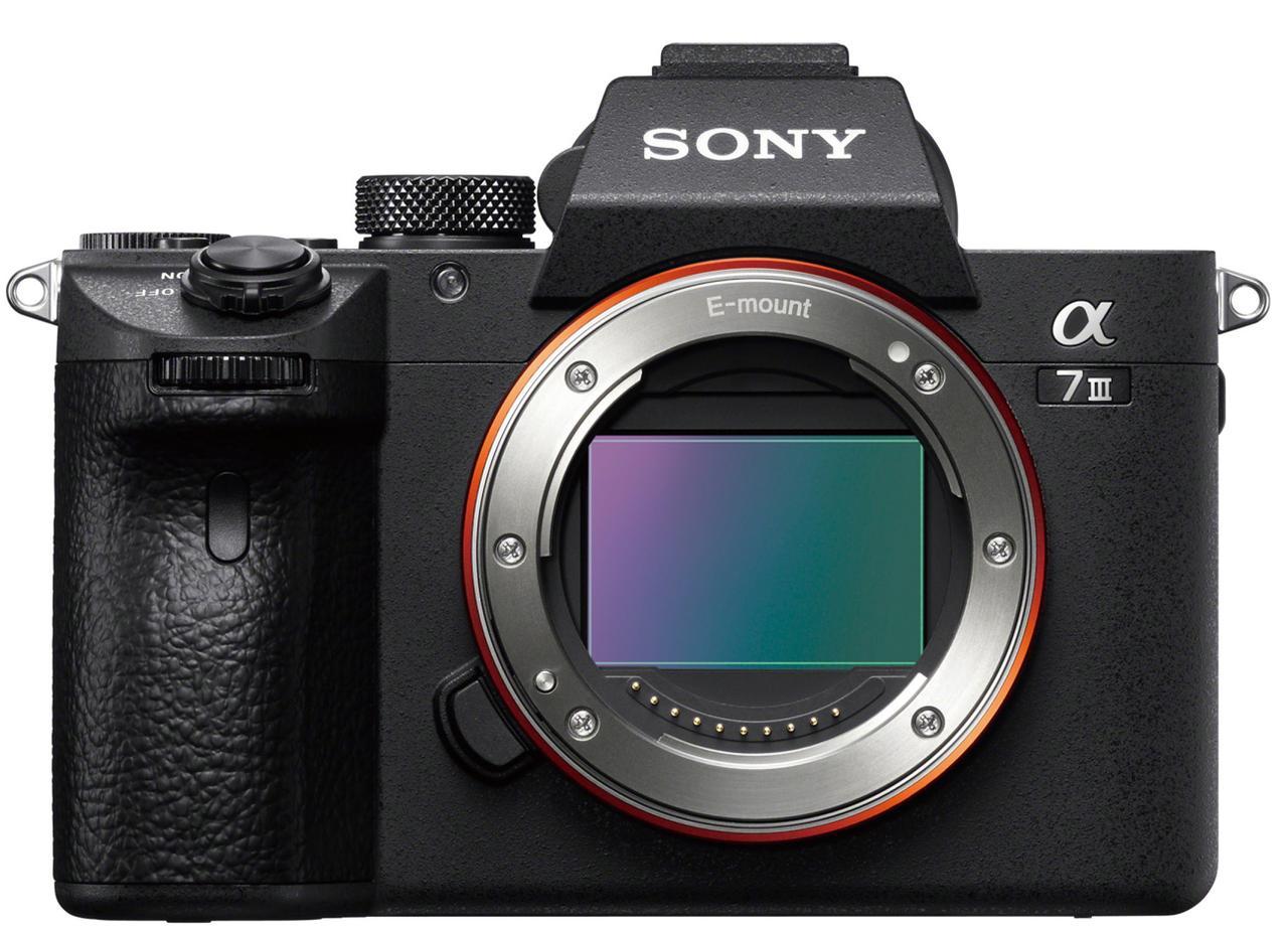 画像: 有効2420万画素で35ミリフルサイズの裏面照射型CMOSセンサーを搭載。ISO20万4800など、高スペック。