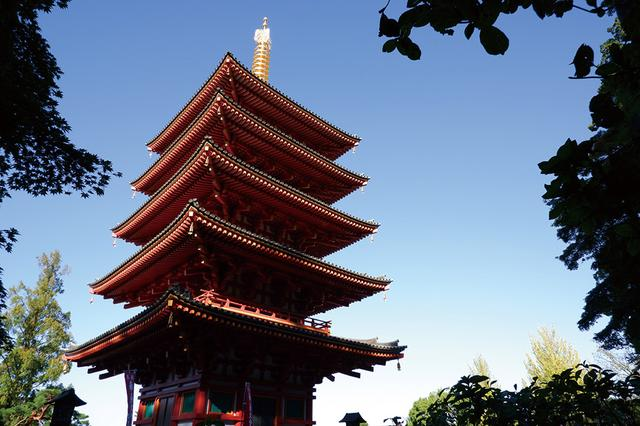 画像: 神社や寺院の境内には、撮影意欲をそそる建造物がある。目立つ所を部分的に切り取るもよし、全体のフォルムを写し込むもよしだ。