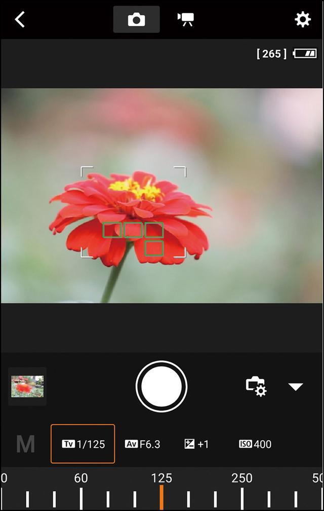 画像: リモートライブビューでは、スマホに撮影画面が表示され、スマホをリモコンにしてシャッターを切ったり、露出やホワイトバランスの設定を変更したりすることも可能だ。