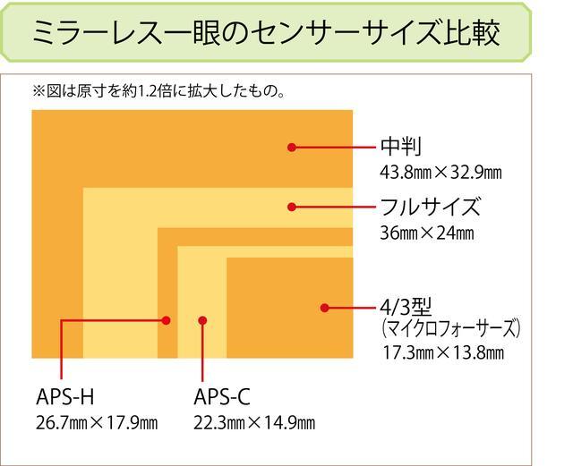 画像: ミラーレス一眼と一眼レフの違いは?どんなメーカーがある?