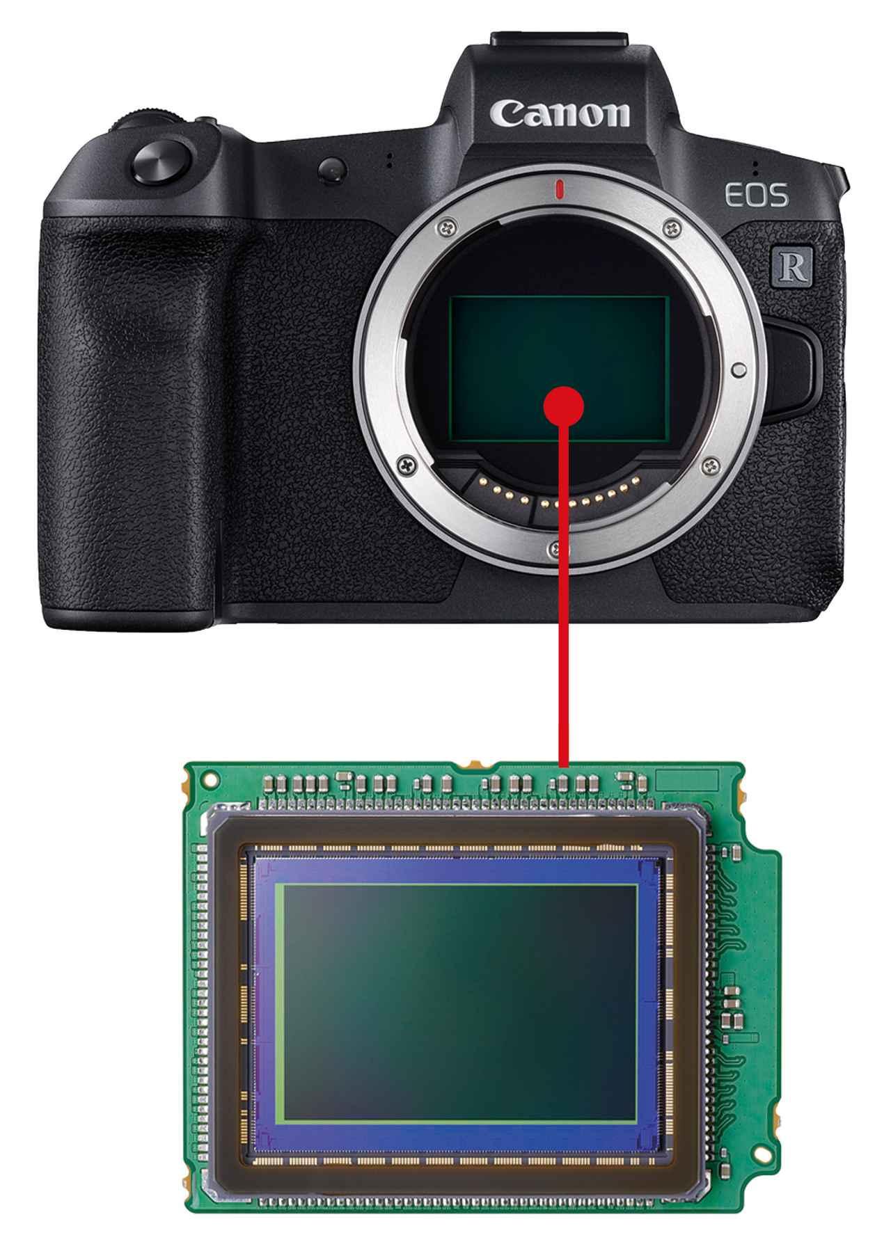 画像: 撮像センサーのサイズは、交換レンズも含めたシステム全体の大きさを左右する。大きいほうが画質や高感度などの面で有利になる一方、機動性や価格の手ごろさを重視するなら小さいほうが有利となる。