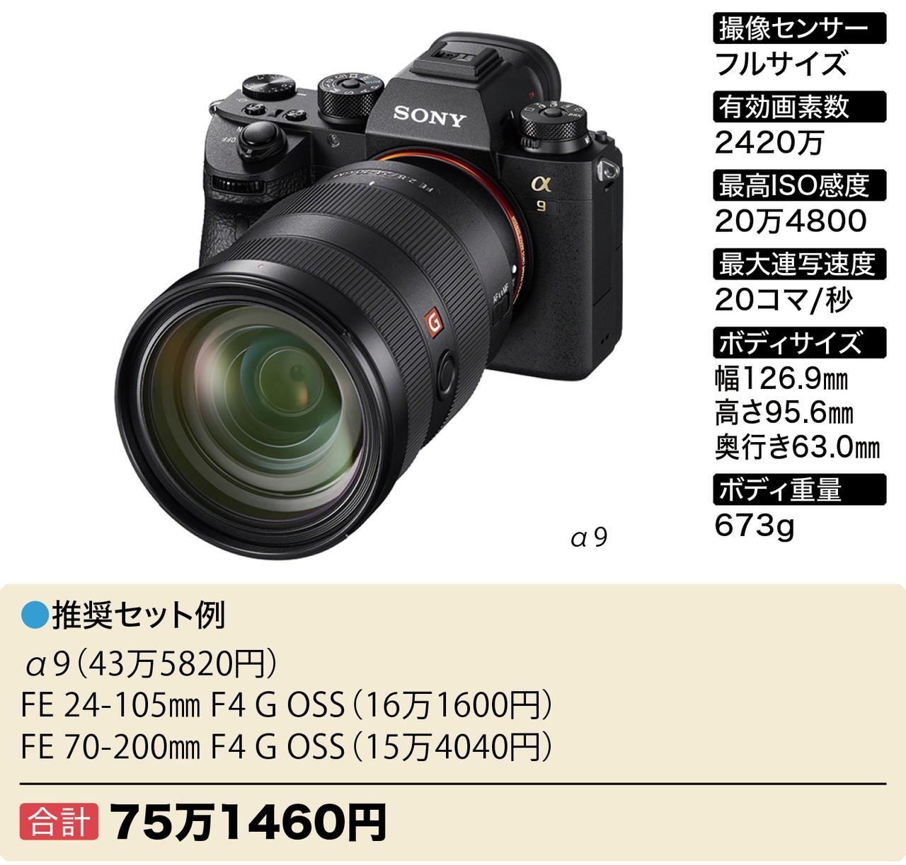 画像3: Wズーム&ボディセットで40万円~おすすめフルサイズミラーレス6選
