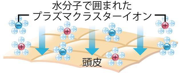 画像: プラズマクラスターイオンの水分子が頭皮をコートして、余分な皮脂を抑制。潤いを保ちながら皮脂バランスを整える。