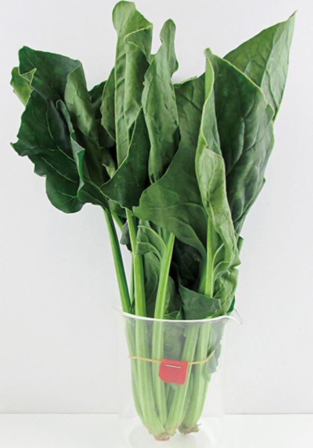 画像: 野菜の鮮度保持へのアプローチはさまざま。