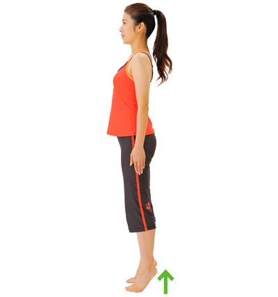 画像: ②ふくらはぎの筋肉を意識しながら、かかとを上げて、3秒静止する。