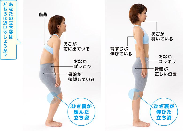 画像: 姿勢が悪くなる発端はひざが伸びなくなること